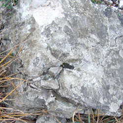 pietra_origini